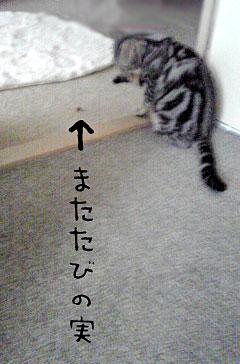 2003_01_09_02.jpg