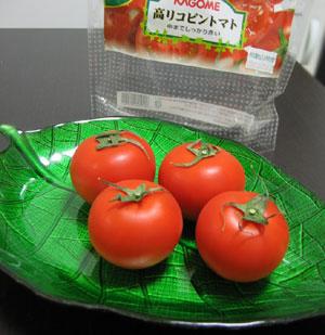 2009_02_15_tomato3.jpg