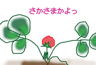 st_01.jpg
