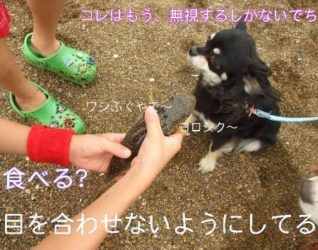 09natsuhukui (149)0000