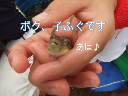 09natsuhukui (141)0000