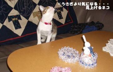 ちゅう闘06
