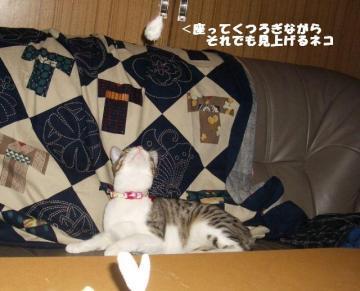 ちゅう闘09