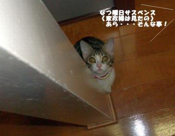 家政婦02