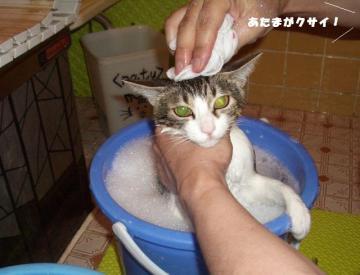 お風呂03