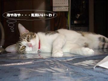 眠り姫02