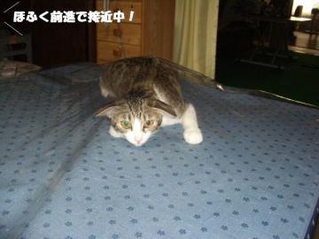 眠り姫03