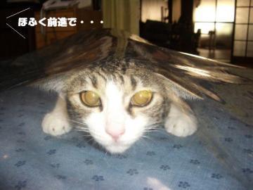 眠り姫04
