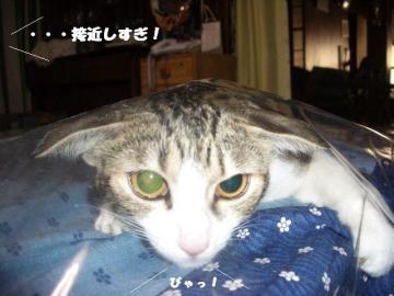 眠り姫05