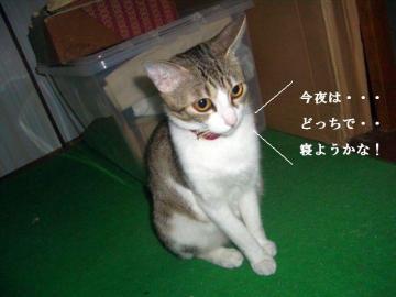 変な子04