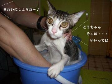 入浴画像01