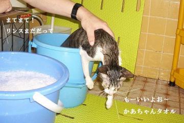 入浴画像03