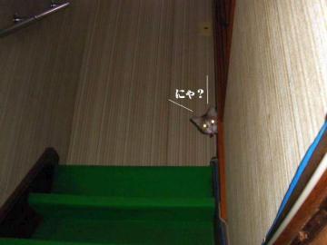 階段遊戯01