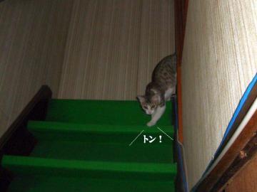 階段遊戯02