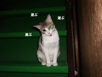 階段遊戯03