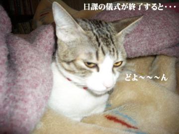 目付き悪04