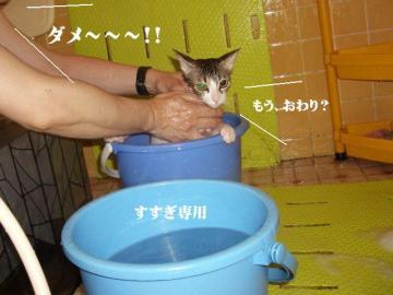 ご入浴06