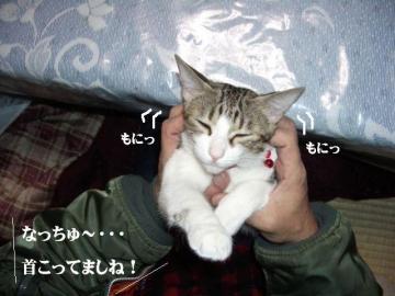 ぱんぱん01