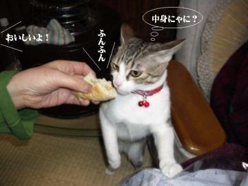 ぱんぱん06