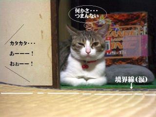 箱寝床02