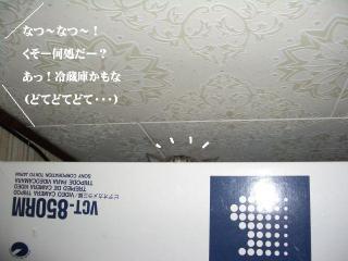 冷蔵庫女王04