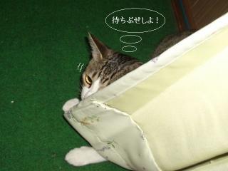 眠いとね01