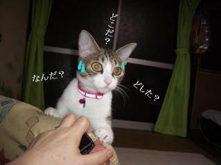 引き摺り女02