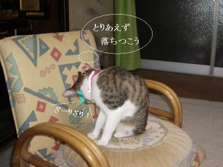 引き摺り女03