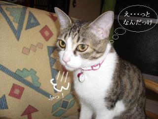 引き摺り女04