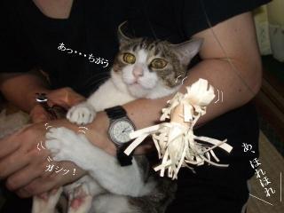 恐怖の爪切り03