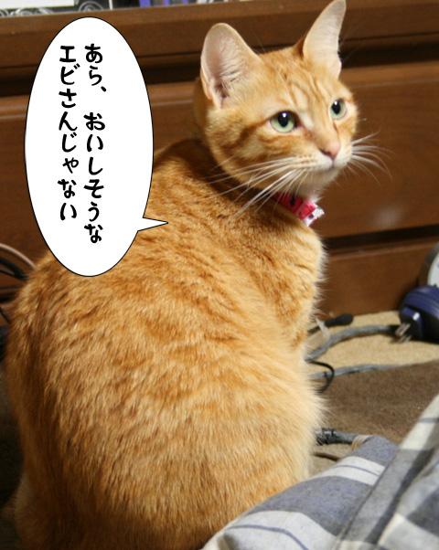 IMG_0137.jpg