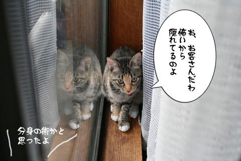 IMG_8605.jpg