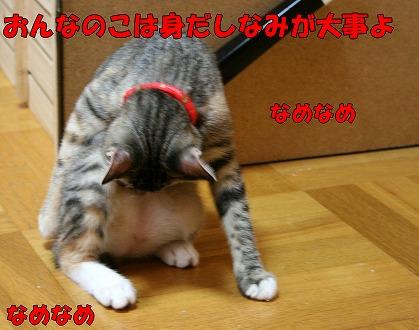 s-IMG_5602.jpg