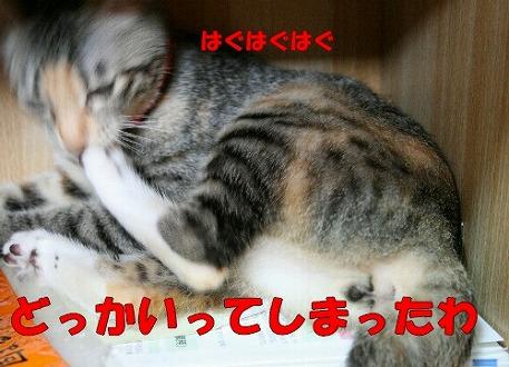 s-IMG_5625.jpg