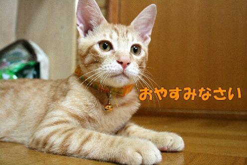 s-IMG_5637.jpg