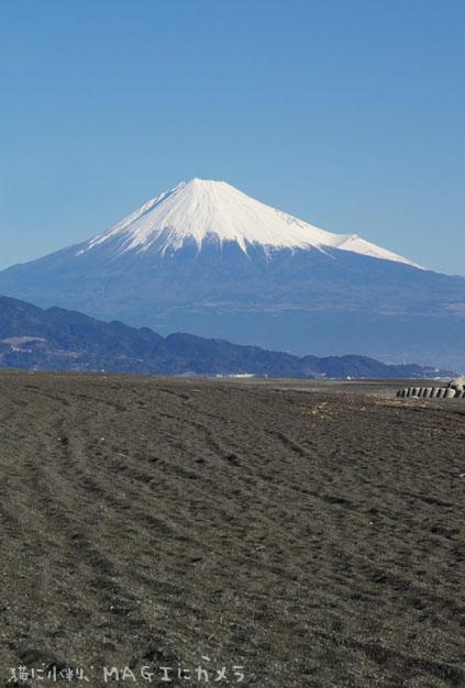 富士山と砂浜