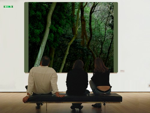 ほら、美術館でも・・・。