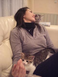 初めての子猫との写真
