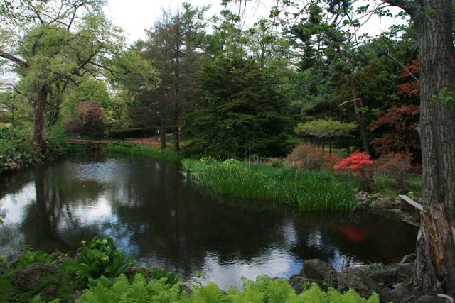 botanical garden1