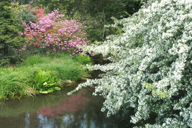 botanical garden12