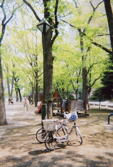 odori park in green1