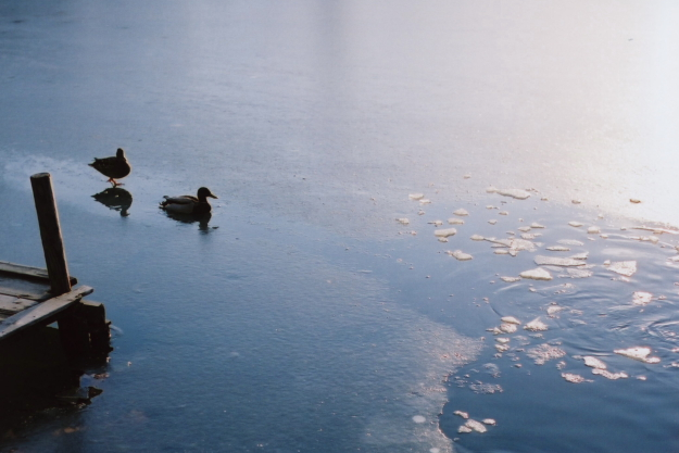 iced lake2