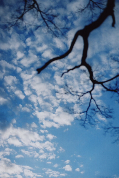 winter sky1