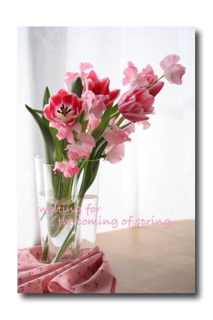 spring pink2
