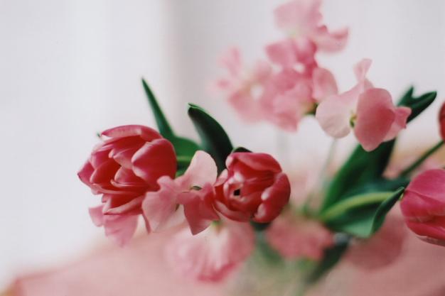 pinkful