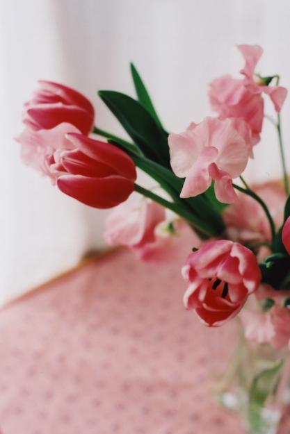 pinkful3