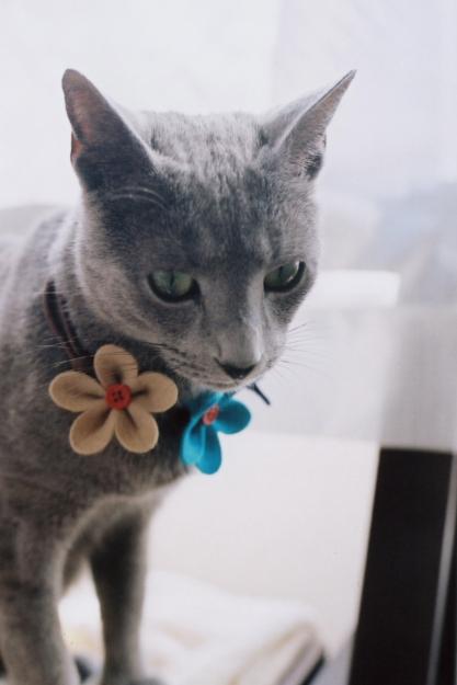 flower choker2
