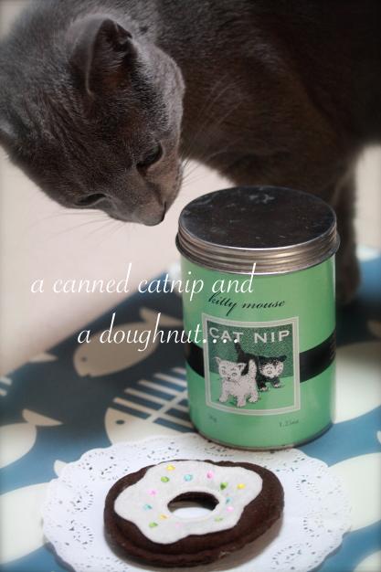 IMG_7799-catnip and doughnutsのコピー
