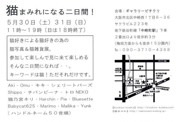 IMG_0001-neko-DM2.jpg