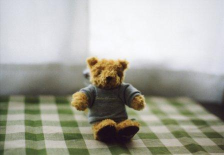 teddybear by contax139